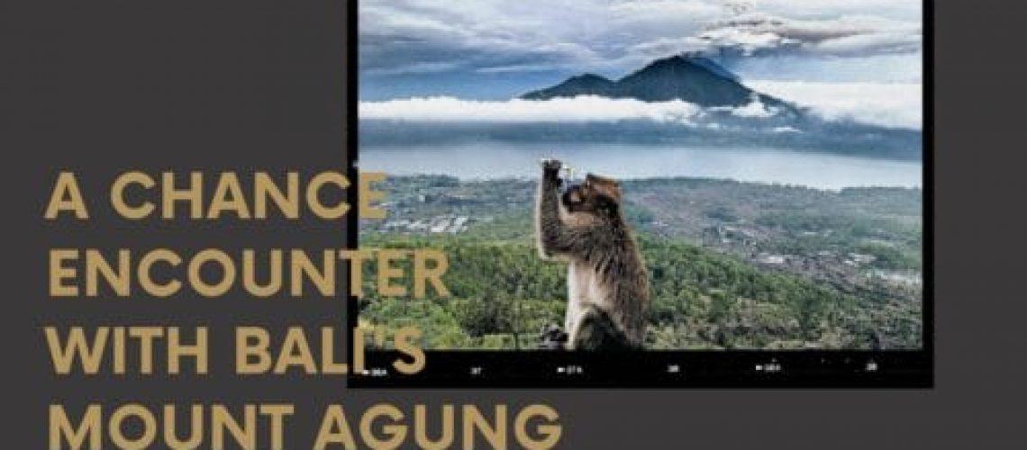 Dudefluencer: A Monkey at Mount Agung